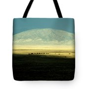 Dome Mountain Tote Bag