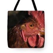 Domestic Chicken Tote Bag