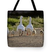 Domestic Geese With Goslings Tote Bag