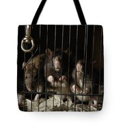 Domestic Rats At The George M. Sutton Tote Bag