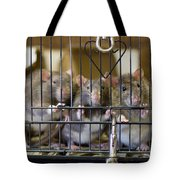 Domestic Rats At The Sutton Avian Tote Bag