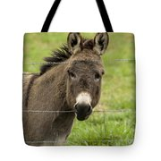 Donkey - The Beast Of Burden Tote Bag