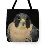 Don't Flinch... I Am Looking At You Tote Bag