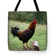 Doodle Dooo Tote Bag