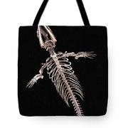 Dorudon Skeleton Tote Bag