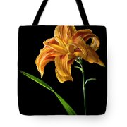 Double Day Lily Tote Bag