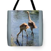 Sandhills Double Dipping Tote Bag