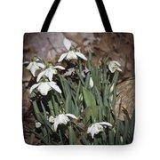 Double Snowdrops Squared Tote Bag