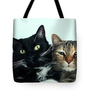 Double Trouble 1 Tote Bag