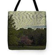 Douglassville Delight Tote Bag