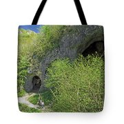 Dove Holes - Dovedale Tote Bag