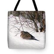 Dove In The Snow Tote Bag