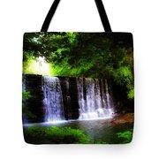 Dove Lake Falls Tote Bag