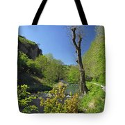 Dove Valley - Beside The River Tote Bag