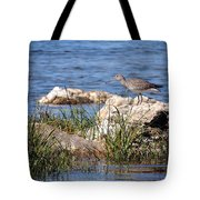 Dowitcher Tote Bag