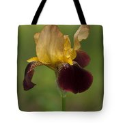 Down Home Two-tone Iris Tote Bag