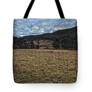 Down The Valley Tote Bag