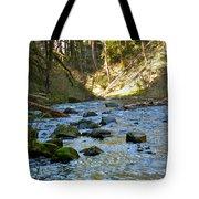 Downstream 2 Tote Bag