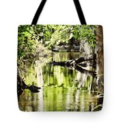 Downstream Reflections Tote Bag
