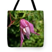 Downy Clematis Tote Bag