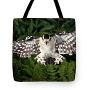 Downy Woodpecker In Flight Tote Bag