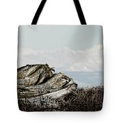 Dozing With Mount Baker Tote Bag