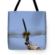 Dragonfly - Handstand Tote Bag