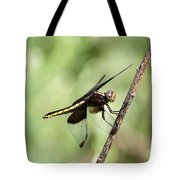 Dragonfly - Yellow Stripe Tote Bag