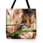 Dragonfly Closeup Tote Bag