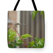 Dragonfly In Nature Tote Bag