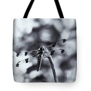 Dragonfly In The Sun Tote Bag