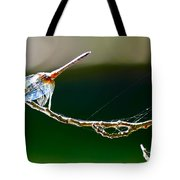 Dragonfly In The Wind Tote Bag