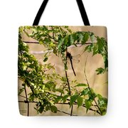 Dragonfly Lunch Tote Bag