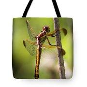 Dragonfly Photo - Yellow Dragon Tote Bag