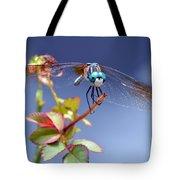 Dragonfly Visit Tote Bag