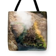 Dragon's Mouth Tote Bag