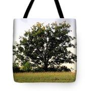 Dream Tree Tote Bag