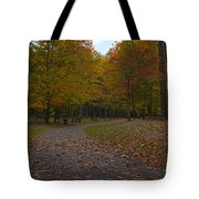 Dreaming Of Picnickers Tote Bag