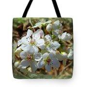 Dreams Of Pear Blossoms Tote Bag