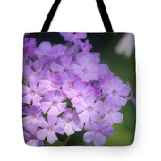 Dreamy Lavender Phlox Tote Bag