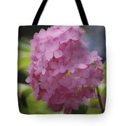 Dreamy Pink Mophead Hydrangea Squared Tote Bag
