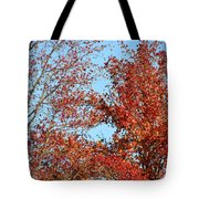 Dressed For Autumn Tote Bag