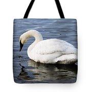 Dribbling Swan Tote Bag