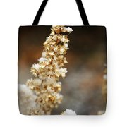 Dried Flower And Crystals Tote Bag