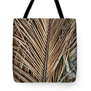 Dried Palm Fronds Tote Bag