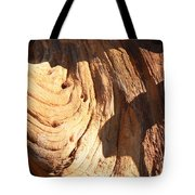 Driftwood 1 Tote Bag