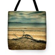 Driftwood 1 Lomo Tote Bag