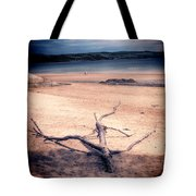 Driftwood 2 Lomo Tote Bag