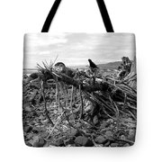 Driftwood And Rocks Tote Bag