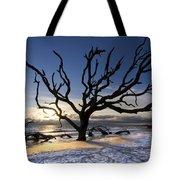 Driftwood Beach At Dawn Tote Bag